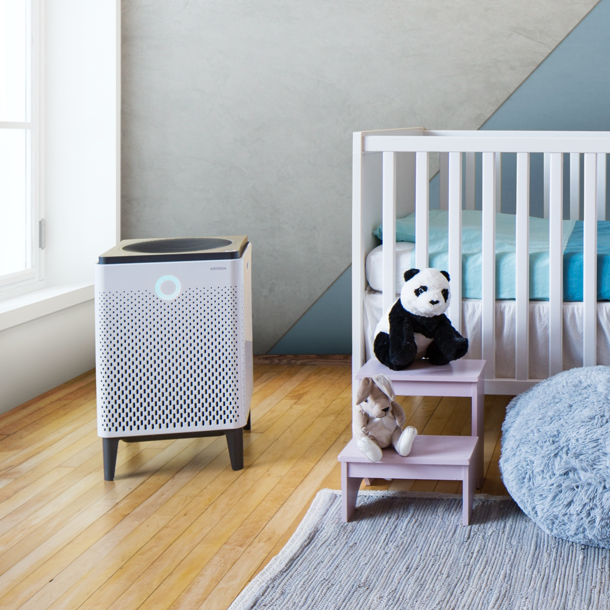 Choosing the Best Air Purifier and Eliminating Indoor Air Pollution