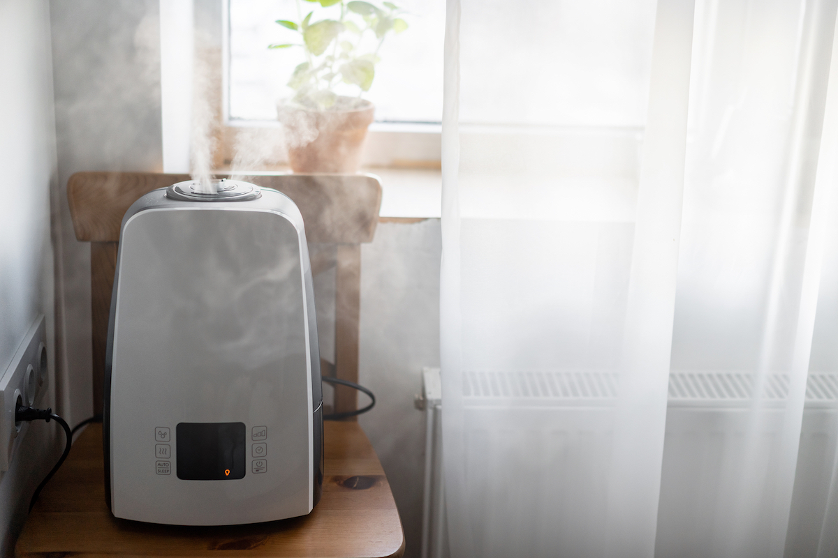 Energy-Efficient Dehumidifiers: Maintaining Your Ideal Home Humidity